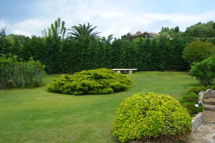 progettazione e realizzazione giardini in costa smeralda