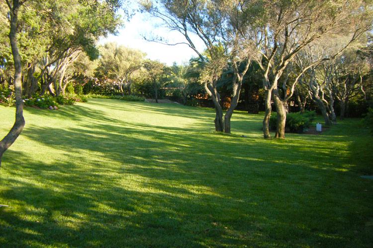 giardini-privati-residenziali-landscaper4
