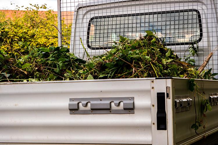 smaltimento-rifiuti-giardinaggio-landscaper3