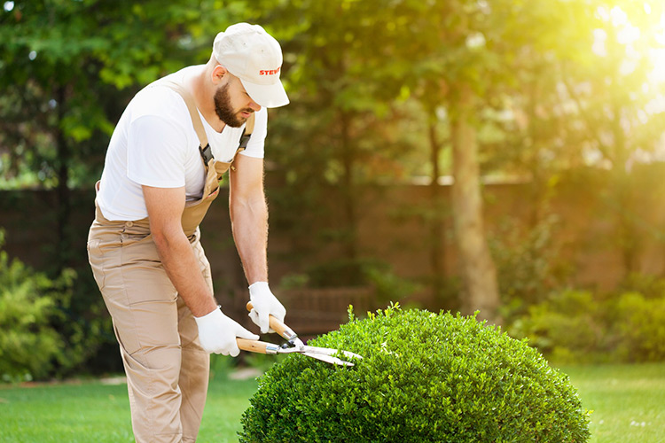 gestione-manutenzione-giardini-landscaper2