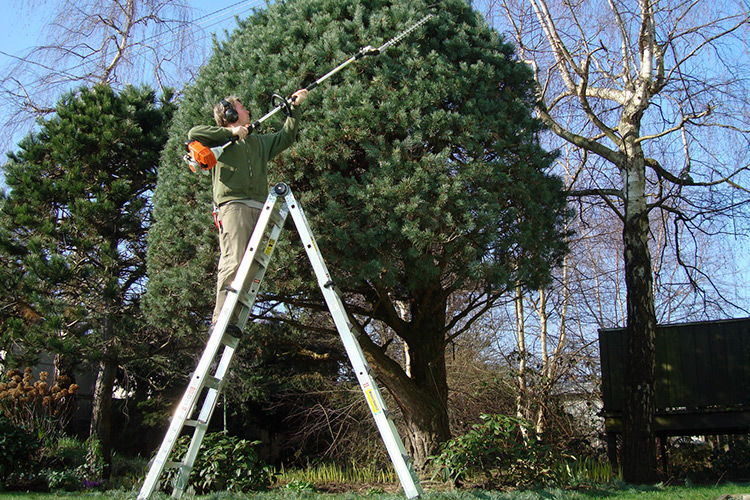gestione-manutenzione-giardini-landscaper5