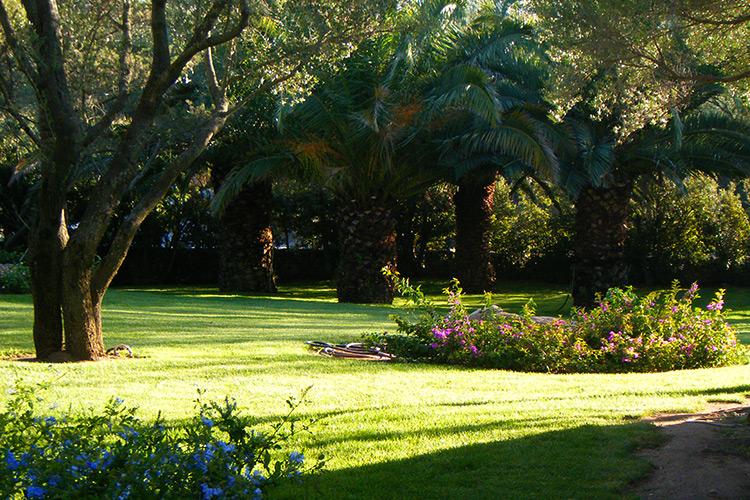 realizzazione-giardini-landscaper4