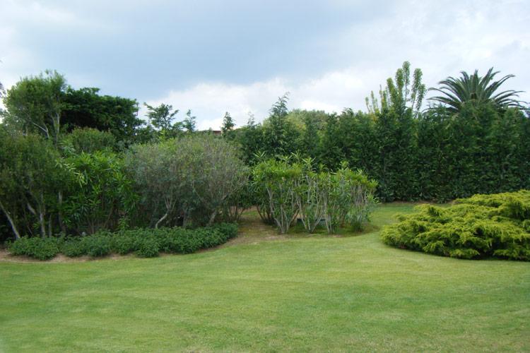 sopralluogo-giardini-landscaper3