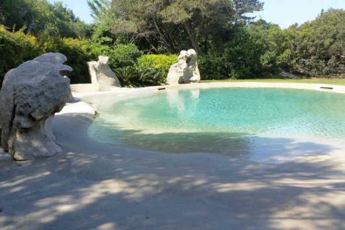Accessori e attrezzature per piscine in costa smeralda for Piscine biodesign